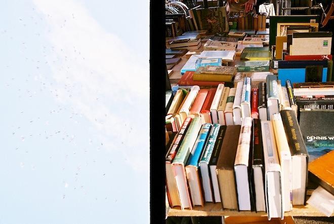 birds & books