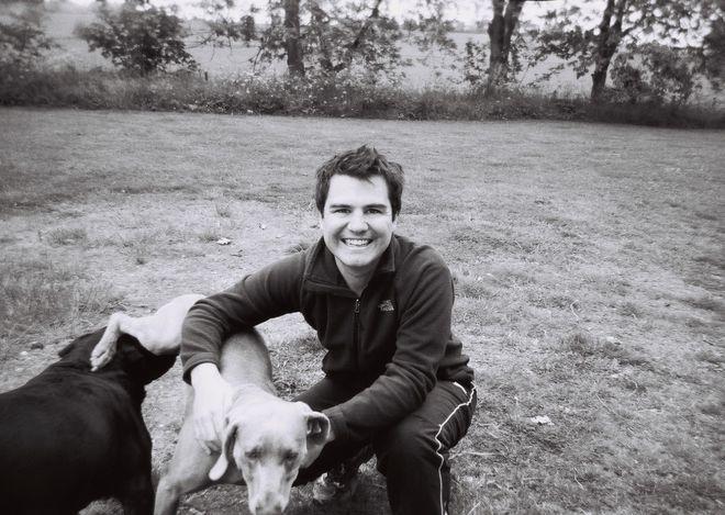 man & dogs